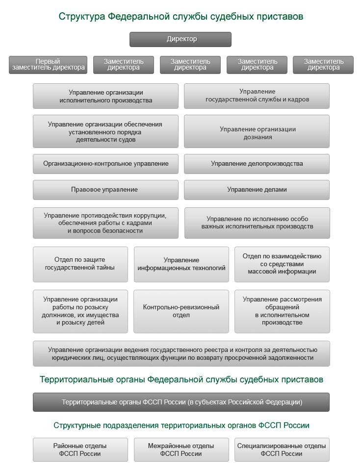 Минюст рассказал об изменениях в структуре ФССП  приставов имеет пять заместителей в ФССП есть 14 управлений и три отдела по защите гостайны по взаимодействию со СМИ и контрольно ревизионный отдел