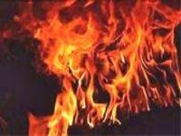 В Минусинске полицейские спалили наркотиков на полмиллиона рублей