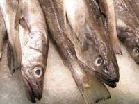 """Таймыр"", эвакуировав рыбу вместо человека, выиграл суд у прокуратуры"