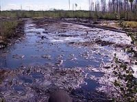 За розлив 4 тонн нефти уволено руководство нефтебазы в Эвенкии
