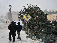 В Хакасии вырубка новогодних елок взята под особый контроль