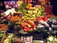 В Хакасии суд запретил выращивать овощи на грязной земле