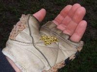 Новосибирские оперативники задержали мужчину с золотой стружкой на 5,7 млн