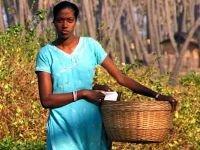 Уроженцев Индии будут судить за попытку дать взятку сотруднику ФМС