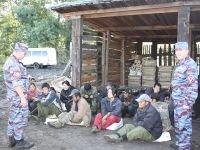 Минусинск: новые тепличные рейды - новые задержанные мигранты