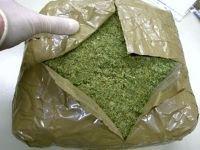 Наркополицейские изъяли 3,5 кг марихуаны