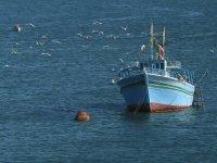 В Красноярском крае впервые нетрезвых водителей лодок отправили на штраф-ст