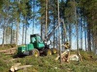 У крупного лесозаготовительного предприятия края арестовали имущество