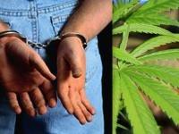 Наркотик в трости обернулся уголовным делом