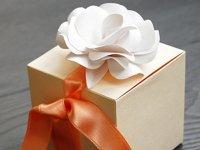 Чем порадовать юриста: обзор лучших подарков на Новый год