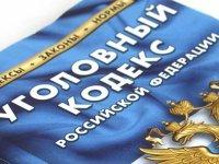 Госдума внесет в УК две новые статьи о наказании за неуплату страховых взносов