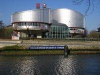 Активисты, выступающие против «Платона», пожаловались в ЕСПЧ на правомерность задержания