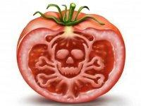 Посеешь одно, пожнешь ГМО