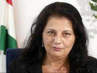 Глава налоговой службы Венгрии подала в суд на американского дипломата из-за клеветы