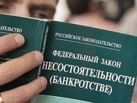 Банкротство граждан поделят между СОЮ и арбитражными судами - проект