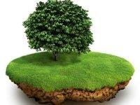 Чужая земля: как не стать жертвой мошенничества с участками