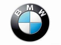 За полиэтиленовые пакеты с логотипом BMW торговец ответит рублем