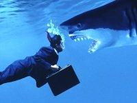 """""""Большая четверка"""" теснит юрконсалтинг: зачем юристам думать как бизнесменам"""