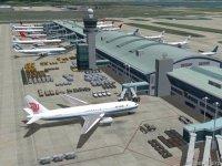 Российских спортсменов депортируют из Южной Кореи из-за дебоша в самолете