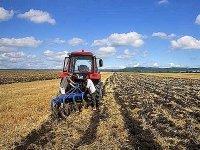 Сенаторы хотят запретить бесплатную выдачу гектара в ДФО иностранцам