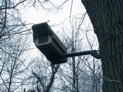 Петербургские адвокаты вслед за московскими получили доступ к записям уличных камер