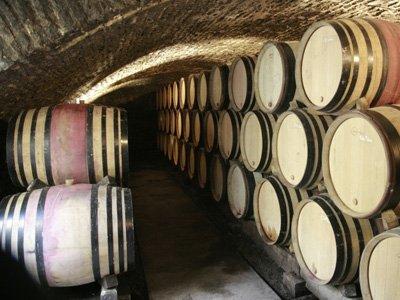 Французам могут запретить пить вино на работе