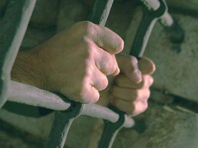 Британский профессор права предложил отменить тюремные сроки для совершивших преступления против чужого имущества