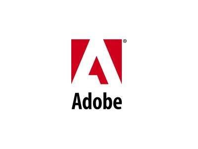 Директор строительного НИИ осуждена за использование нелицензионных программ Autodesk и Adobe Systems