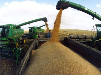 Китай подал в суд на Украину за невыполнение контракта по поставке зерна на $3 млрд