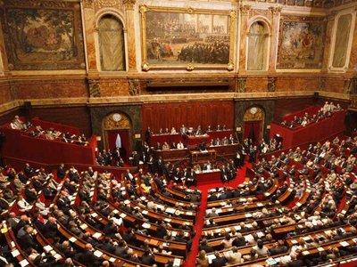 Сенат Франции попросил правительство смягчить санкции против России
