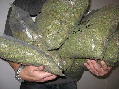 Судят замглавы отдела УФСКН, собиравшего взятки с тех, кому подбрасывал наркотики