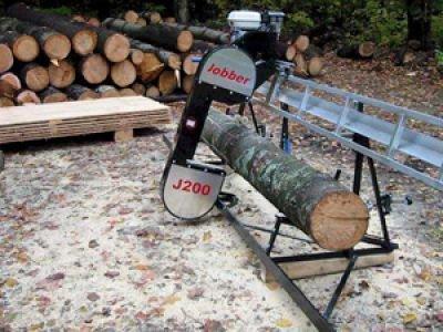 Вынесен первый приговор за контрабанду леса кругляка