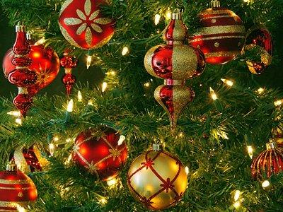 Полиция проверяет кражу у адвоката новогодней елки, украшавшей вход в офис