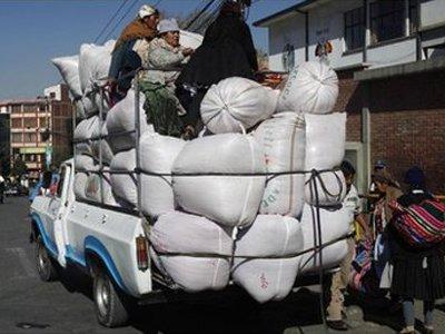 В Боливии главный контролер коки был арестован по подозрению в злоупотреблении властью