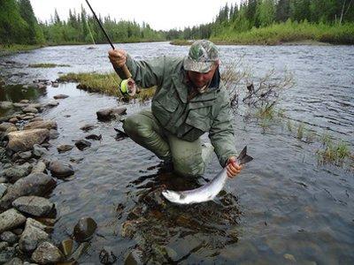 Правительство пересмотрит размер штрафов за браконьерский вылов рыбы