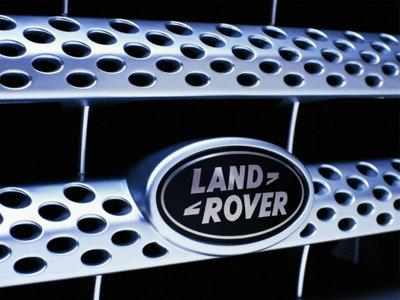 Апелляция обязала АСГМ рассмотреть иск Jaguar Land Rover по доменам в зоне .ru