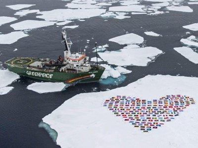 Активисты Greenpeace пожаловались в ЕСПЧ на Россию за незаконное задержание