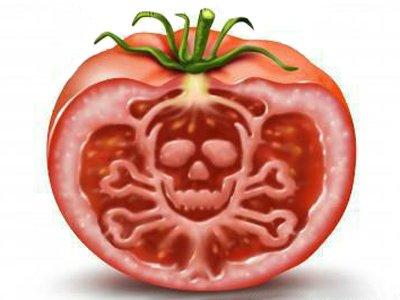 Совет Федерации запретил выращивание и ввоз ГМО-продуктов в Россию