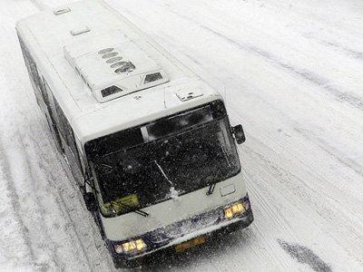 Апелляция ограничила пассажирку в компенсации за ушибы, полученные при резком торможении автобуса