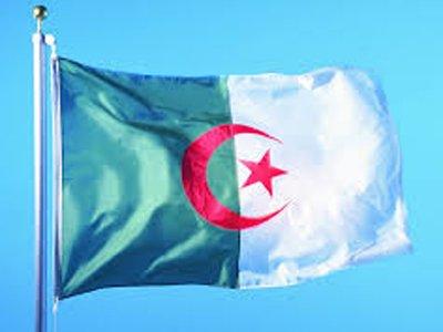 Алжирец получил два года за то, что опубликовал в Facebook видео полицейского беспредела