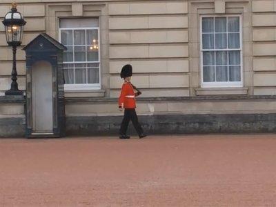 Начато расследование в отношении караульного Букингемского дворца, станцевавшего для туристов