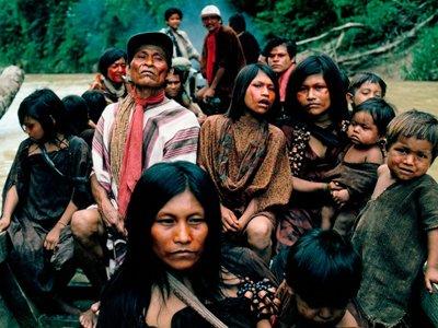 """Власти Бразилии расследуют убийство индейских вождей, перешедших дорогу """"черным лесорубам"""""""