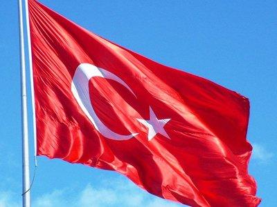 """Суд впервые арестовал турка, присоединившегося к """"Исламскому государству"""""""