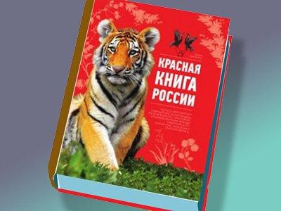 Новое полное издание Красной книги РФ выйдет впервые за 14 лет