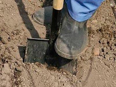 Минюст подготовил базу для нового вида наказания – принудительных работ