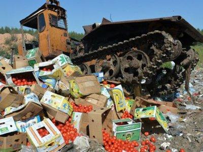 СМИ: видный чиновник обратился в КС с жалобой на продуктовое эмбарго, сам он это называет розыгрышем