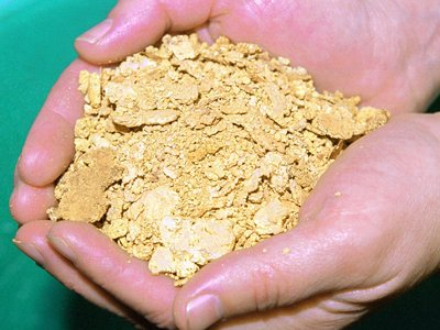 """Власти готовят почву для """"золотой лихорадки"""""""