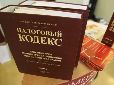 Совфед одобрил закон о налоговых каникулах для нянь и репетиторов