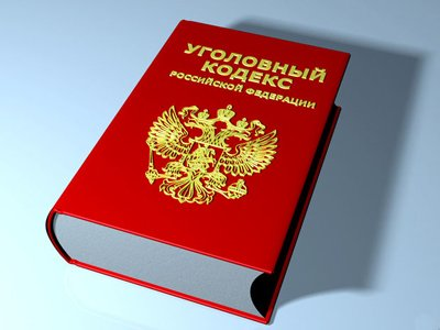 Президентские поправки в УК РФ о смягчении наказаний - текст законопроекта
